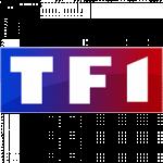 tf1-partenaire-viewsurf-webcam